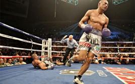 WBO вынесла новое решение по поводу следующего боя Салидо