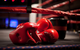 Итоги года в мире бокса от ToFight.ru
