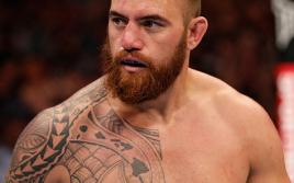 UFC on FOX 11: Вердум — Браун, Тейт — Кармуш