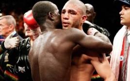 ТОП-5 «классных боксеров» мира