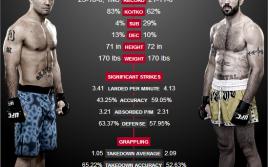 (ПРЕВЬЮ) UFC on Fox 12: Робби Лоулер — Мэтт Браун. «Бессмертный против беспощадного»