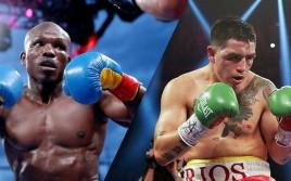 WBO: Победитель боя «Брэндон Риос — Тимоти Брэдли» должен встретиться с Садамом Али