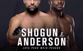 14 мая на UFC 198: Маурисио Руа — Кори Андерсон