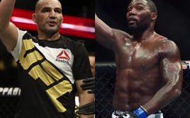 Бои Джонсон-Тейшейра и Серроне-Стори пройдут на UFC 202