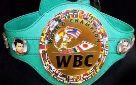 WBC исключит из рейтингов порядка 20-ти бойцов?