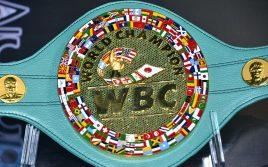 WBC: Отец бойца не может быть главным тренером