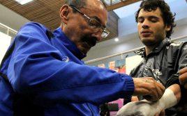 Начо Беристайн: Чавес-младший побоялся бить Альвареса