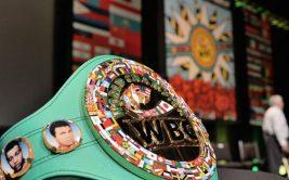 Всемирный боксерский совет