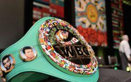 Всемирный боксерский совет (WBC) планирует создать новую весовую категорию