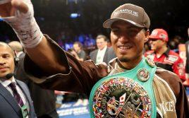 WBC: Майки Гарсия и Хорхе Линарес должны начать переговоры 12 марта