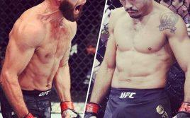 Жозе Альдо против Джереми Стивенса на UFC в Сингапуре?