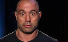 Джо Роган раскритиковал третий поединок между Чаком Лидделлом и Тито Ортисом