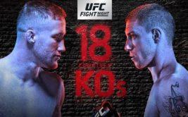 Результаты турнира UFC Fight Night 135 «Гейджи - Вик»