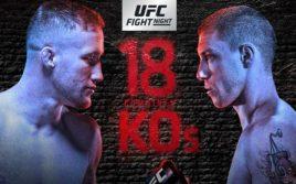 Результаты турнира UFC Fight Night 135 «Гейджи — Вик»