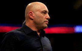 Джо Роган: Хочу, чтобы Bellator стал настоящим конкурентом UFC
