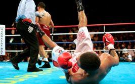 нокдаунов в боксе