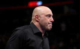 Джо Роган предрекает проблемы бойцам UFC, которые выйдут против Бена Аскрена