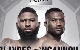 Результаты турнира UFC Fight Night 141: Блейдс — Нганну