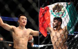 Результаты турнира UFC Fight Night 139: Родригес — Корейский Зомби