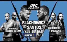 Результаты турнира UFC Fight Night 145: Блахович — Сантос