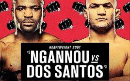 Анонсированы крупные бои на UFC 239