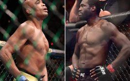 Андерсон Сильва — Джаред Каннонье, факты UFC 237!