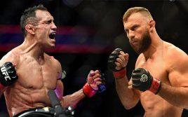 Превью: «Тони Фергюсон — Дональд Серроне», UFC 238