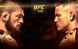 Смотреть онлайн бой Хабиб Нурмагомедов - Дастин Порье. Прямая трансляция UFC 242