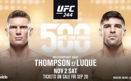 Стивен Томпсон — Висенте Луке, факты перед UFC 244