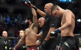 UFC 244: 'Нейт Диаз — Хорхе Масвидал' стал одним из самых успешных турниров года