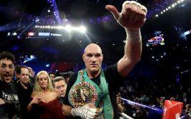 WBC: Тайсон Фьюри не получит статус Franchise, пока не побьет Уайта