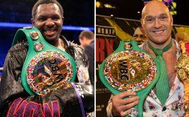 Президент WBC намекнул, что Фьюри и Джошуа встретятся нескоро