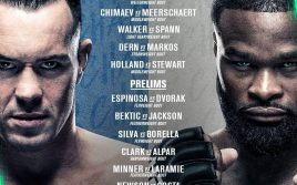 Результаты турнира UFC Fight Night 178