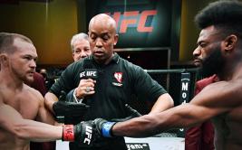 Петр Ян - Алджамейн Стерлинг 2, UFC 267. Полный разбор реванша